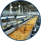 Food Processing Picture